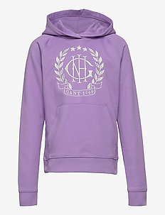 D1. MONOGRAM SWEAT HOODIE - pulls à capuche - lavender purple