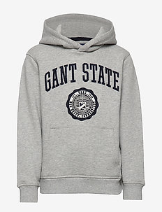 D1. GANT VARSITY SWEAT HOODIE - hoodies - light grey melange