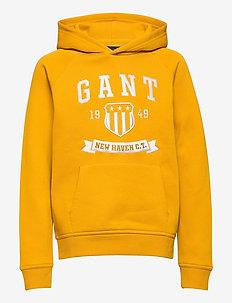 D2. NEW HAVEN BANNER HOODIE - hoodies - ivy gold