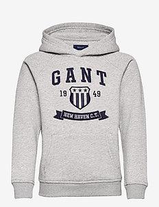 D2. NEW HAVEN BANNER HOODIE - hoodies - light grey melange