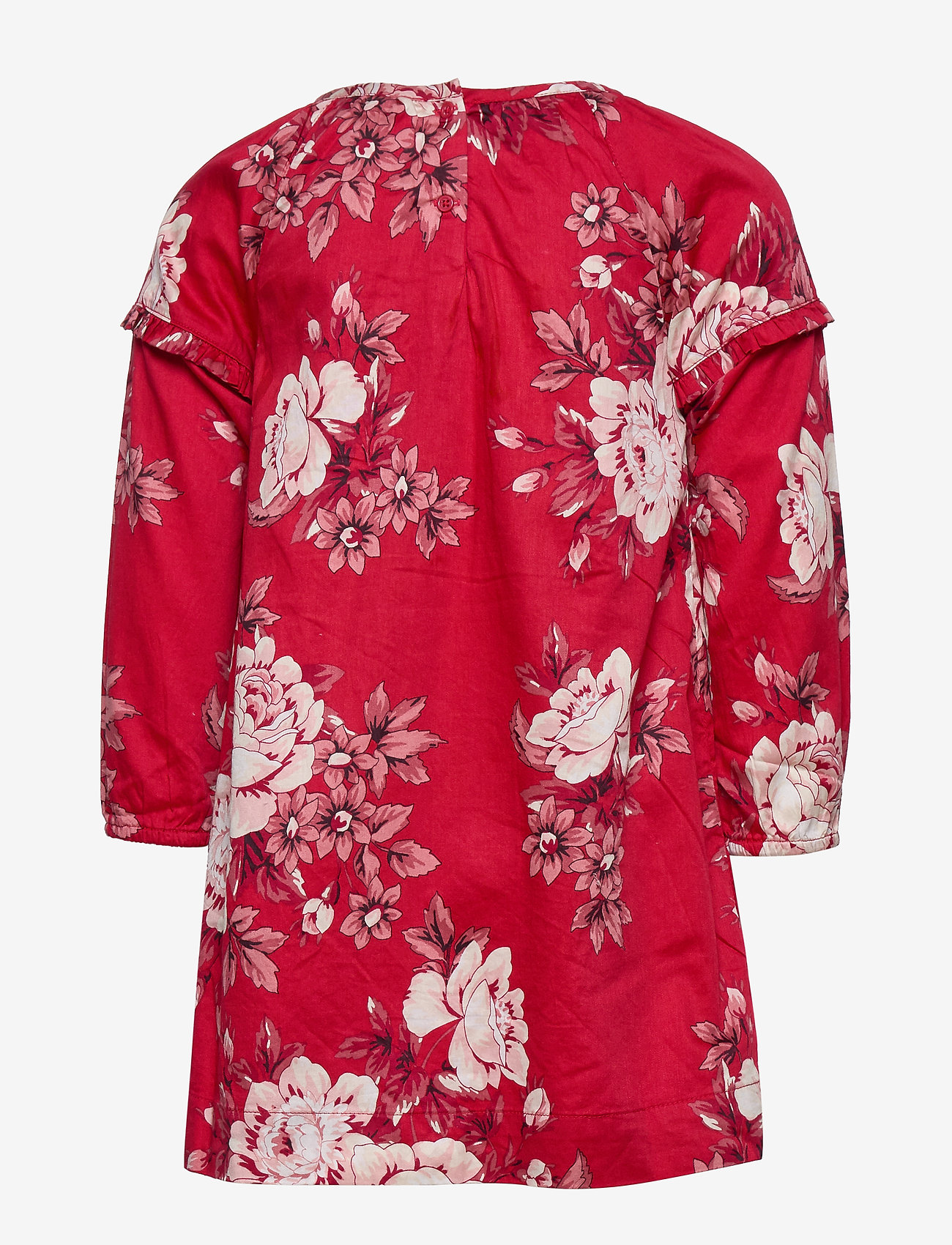 Toddler Floral Ruffle Dress (Red Floral Print) (26.40 €) - GAP Ari6T