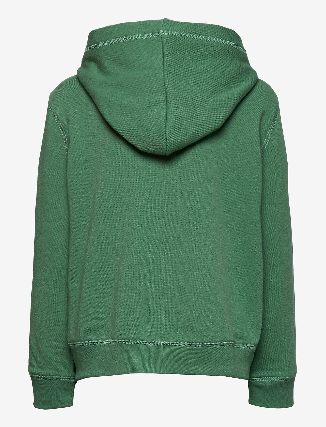 GAP - IE FT BASIC ARCH FZ - kapuzenpullover - arctic green 612 - 1