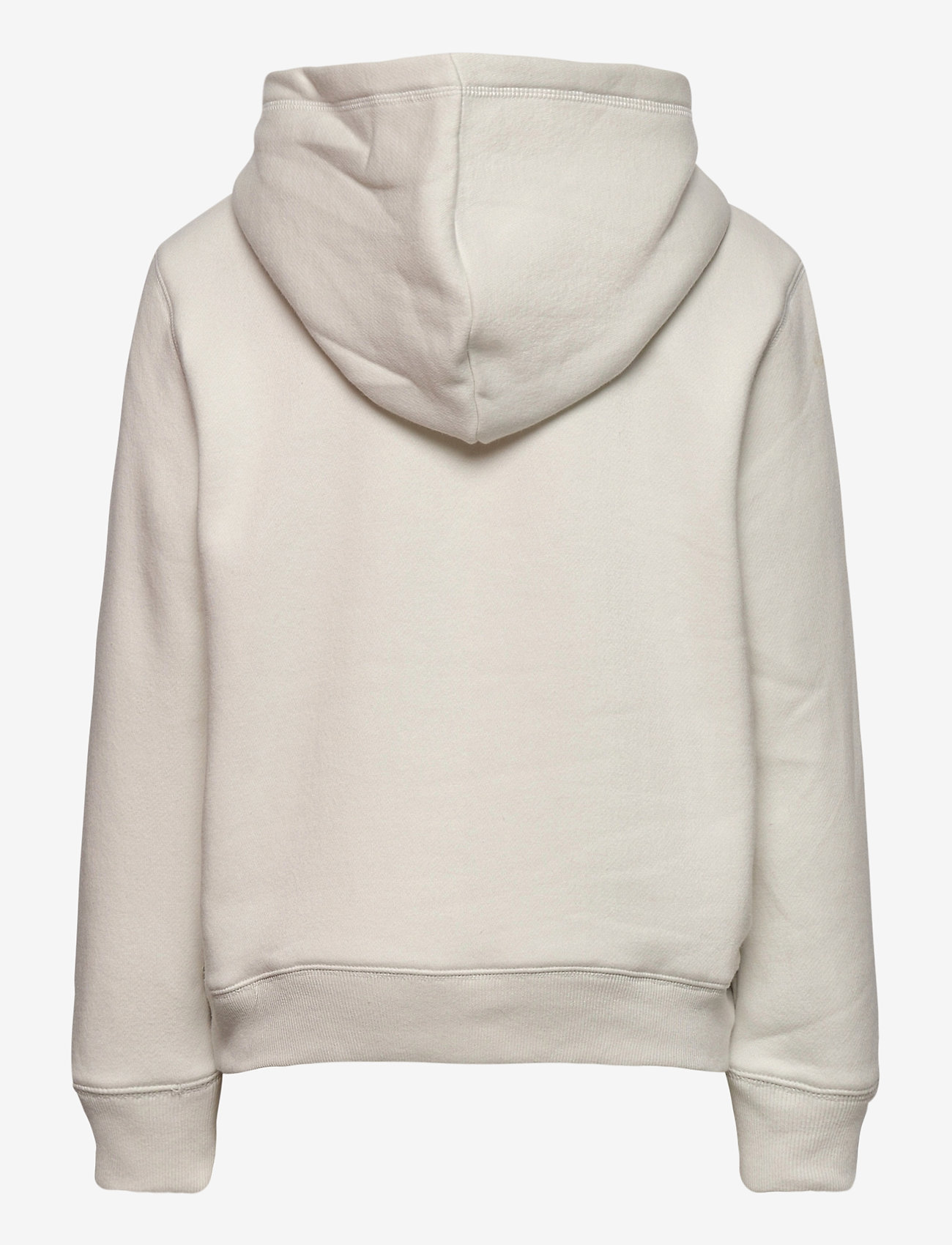 GAP - IE FLEECE ARCH PO HD - kapuzenpullover - carls stone - 1
