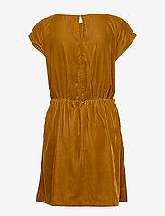 GAP - Velvet Skater Dress - korte jurken - gold wkf827 f - 1