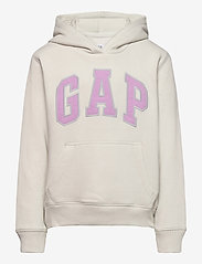 GAP - IE FLEECE ARCH PO HD - kapuzenpullover - carls stone - 0