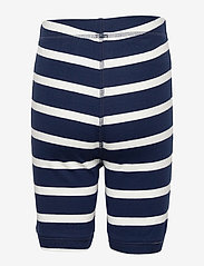 GAP - Kids 100% Organic Cotton Dinosaur PJ Set - pyjamas - elysian blue - 3