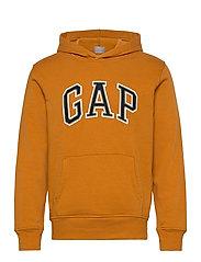 Gap Arch Logo Hoodie - AUTUMN ORANGE