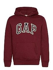 Gap Arch Logo Hoodie - SHIRAZ239