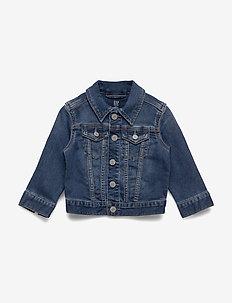 Toddler Icon Denim Jacket - denim & corduroy - medium wash