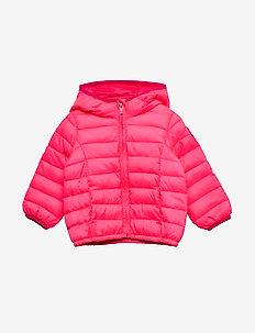 Toddler ColdControl Lightweight Puffer - puffer & padded - pink light