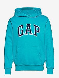 Gap Logo Pullover Hoodie - pulls à capuche - turquoise