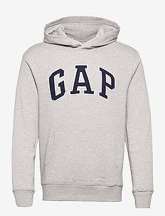 XLS FT ARCH PO HD - basic sweatshirts - b10 grey heather