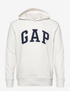 XLS FT ARCH PO HD - basic sweatshirts - carls stone