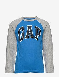 FR LS PTF LOGO GR - langærmede t-shirts - breezy blue 504