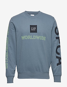 Graphic Carbonized Crewneck Sweatshirt - PACIFIC BLUE