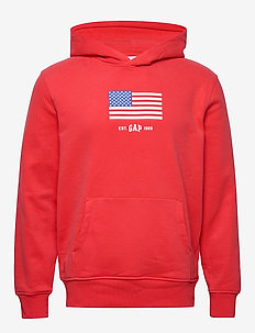 Gap Logo Flag Carbonized Hoodie Sweatshirt - HAWAIIAN RED 683
