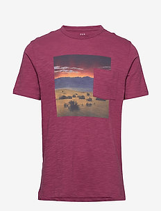 Graphic Pocket T-Shirt - printed t-shirts - crushed berry