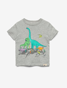 Toddler Graphic Short Sleeve T-Shirt - LIGHT HEATHER GREY B08