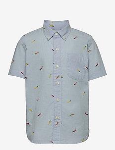 Kids Tropical Button-Down Shirt - koszule - blue print stripe
