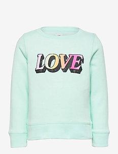 Kids Recycled Graphic Crewneck Sweatshirt - sweatshirts - soft jade