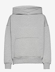 RubiGZ hoodie NOOS - LIGHT GREY MELANGE