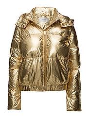 Gold jacket YE2017
