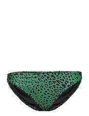 Pilea bikini bottom AO18 - GREEN LEOPARD