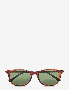 GG0830SK - ronde zonnebril - havana-gold-green