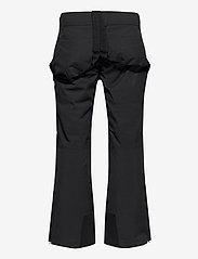 Halti - Puntti Recy M DX ski pants - pantalons de ski - black - 1