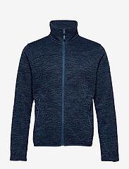 Halti - Ruoko M Jacket - fleece midlayer - blue opal melange - 0