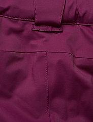 Halti - Podium Women's DX Ski Pants - insulated pants - plum purple - 5