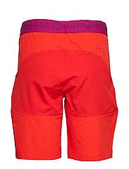 Pallas W Shorts