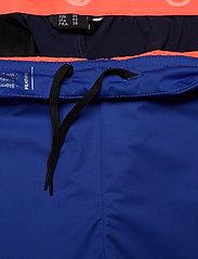 Halti - Kiilo W Pants - softshell pants - power blue - 5