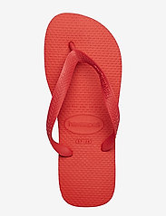 Havaianas - Hav Top - japonki - ruby red 2090 - 3