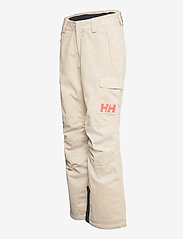 Helly Hansen - W SWITCH CARGO INSULATED PANT - skibukser - pelican - 2