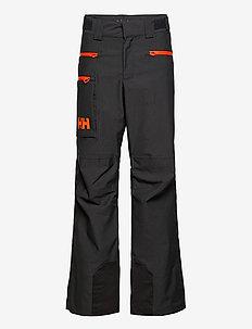GARIBALDI 2.0 PANT - skiing pants - slate