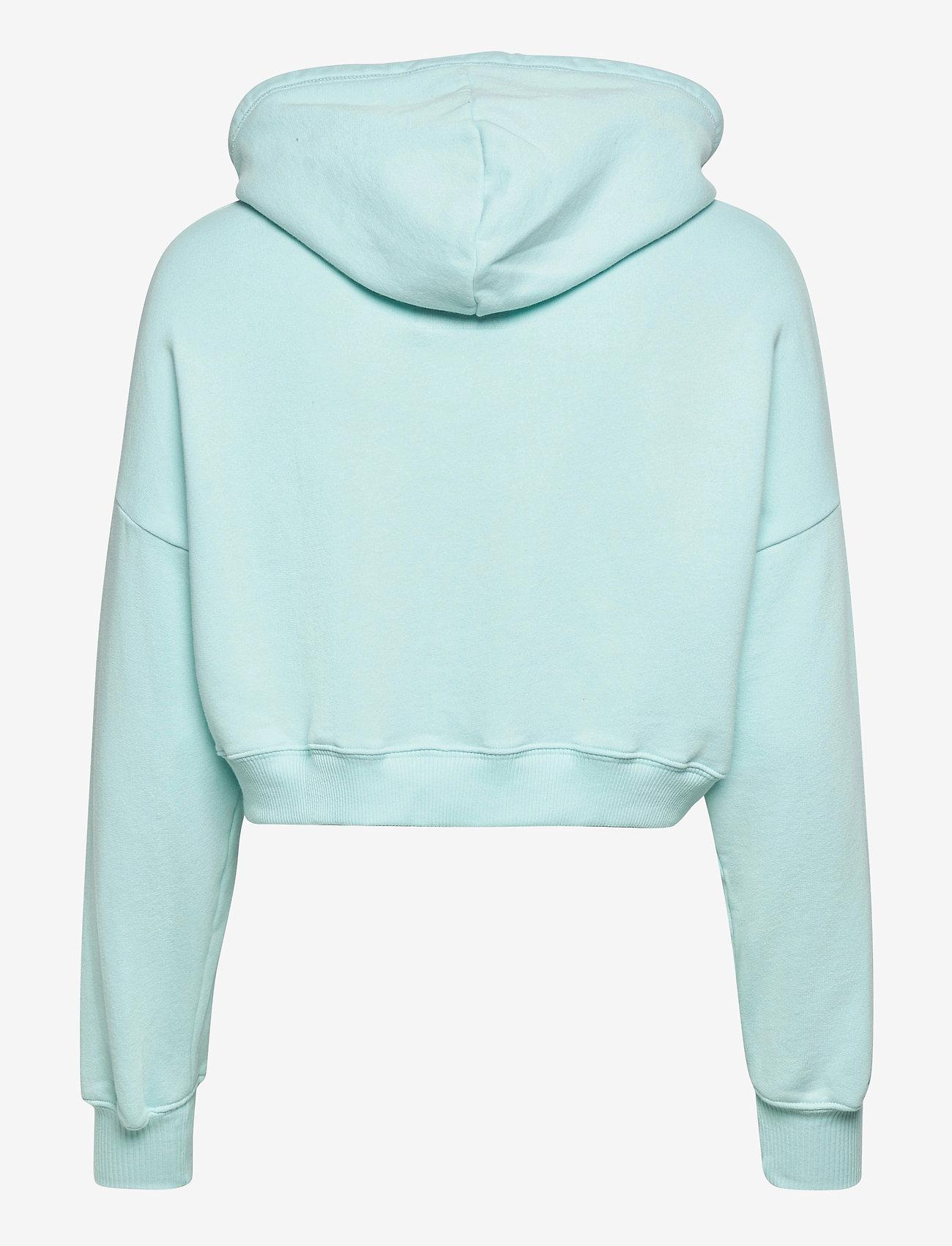 Hollister - HCo. GIRLS SWEATSHIRTS - hættetrøjer - blue - 1