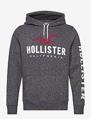 Hollister - Tech Logo - hoodies - black sd/texture - 0