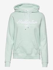 Hollister - HCo. GIRLS SWEATSHIRTS - hættetrøjer - mint - 0