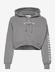 Hollister - HCo. GIRLS SWEATSHIRTS - hættetrøjer - grey - 0