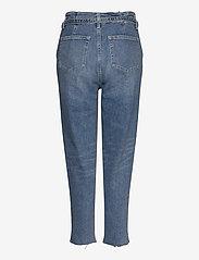 Hollister - Mom Jeans - mom jeans - light destroy - 1