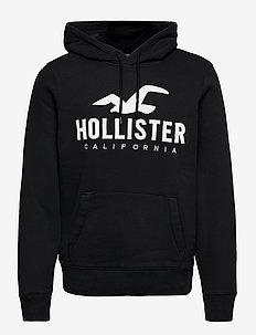 HCo. GUYS SWEATSHIRTS - hoodies - black dd