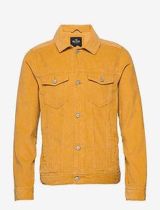 Jacket - GOLD DD