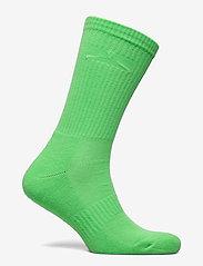 HOLZWEILER - Hanger Sock - sokken - green - 1