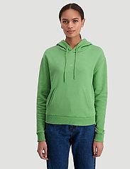 HOLZWEILER - Hang on sweat - bluzy z kapturem - green - 0