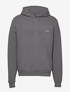 HZW Hoodie - basic sweatshirts - dark grey