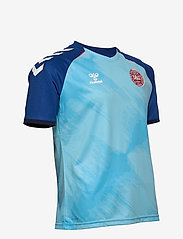 Hummel - DBU 20/21 GK JERSEY S/S - football shirts - blue - 2