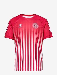 DBU FAN 2020 RETRO TEE - football shirts - tango red/white