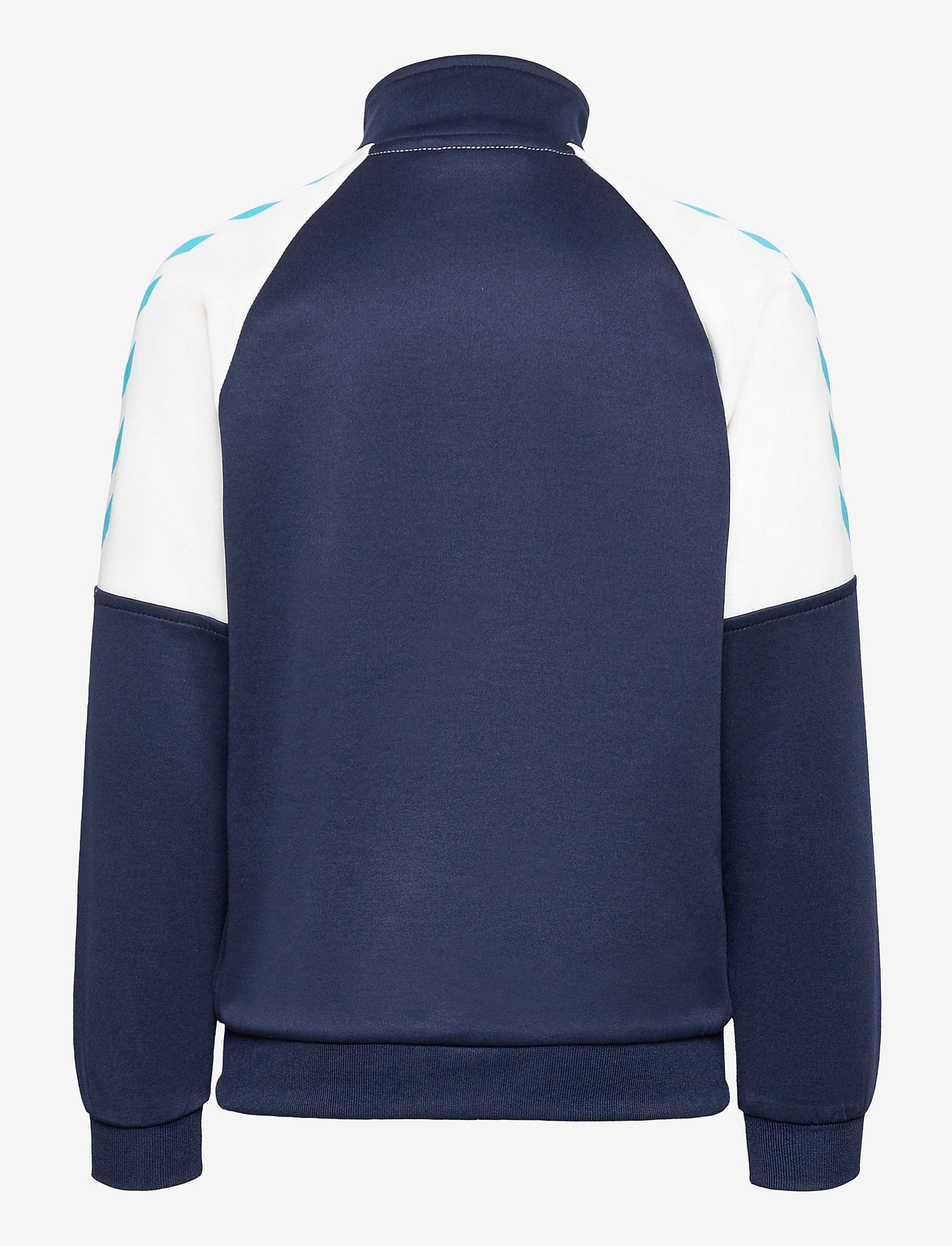 Hummel - hmlDENNIS ZIP JACKET - sweatshirts - black iris - 1