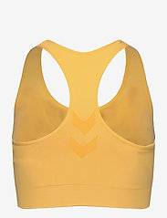 Hummel - SUE SEAMLESS SPORTS TOP - urheiluliivit - cream gold - 1